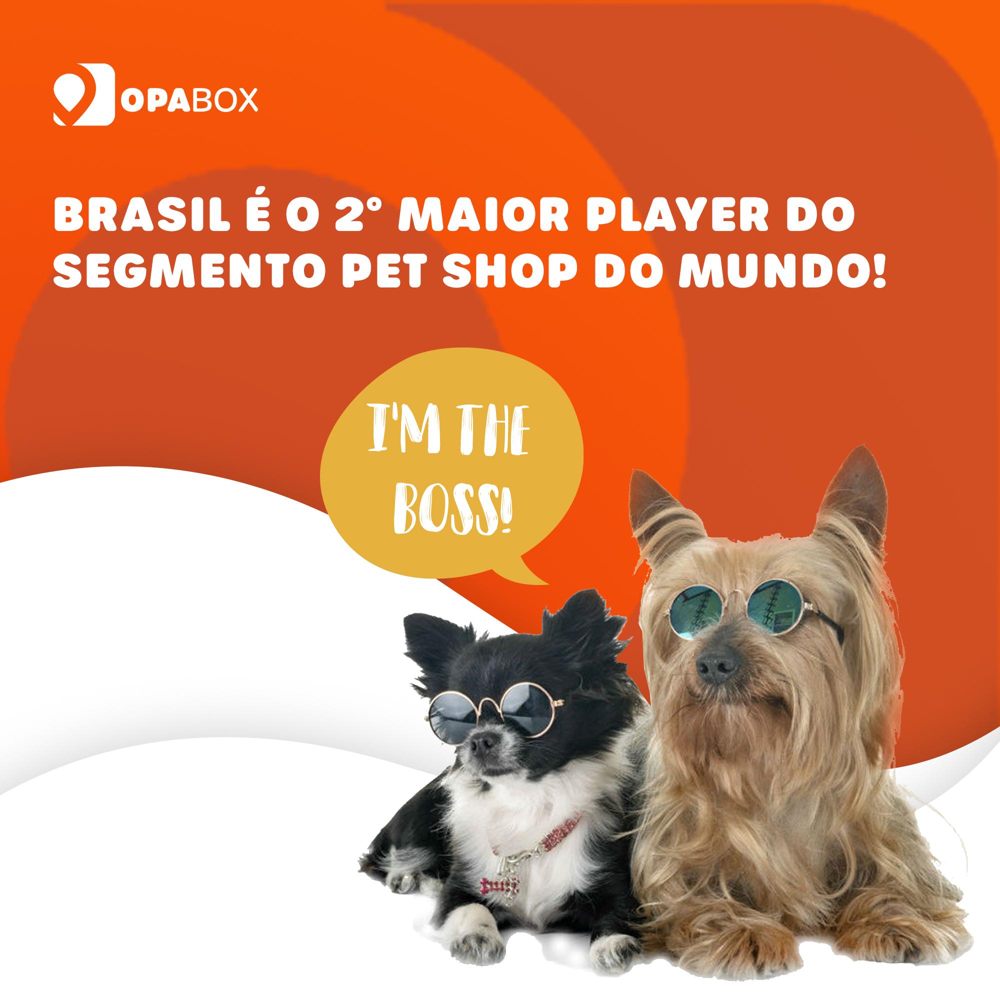 Mercado Pet cresce no Brasil